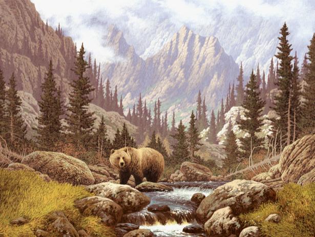 Фотообои медведь в лесу (animals-0000142)