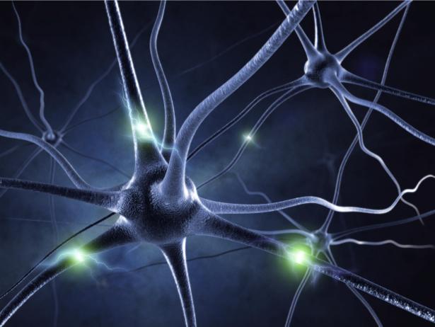 Фотообои нейроны в действии (background-0000263)
