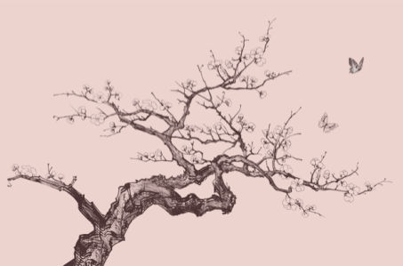 Дерево сакуры фото обои цветы (flowers-0000243)