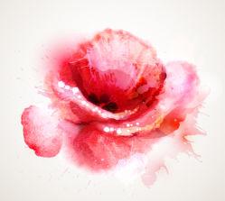 flowers-0000711