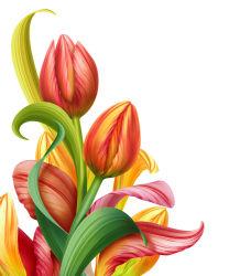 flowers-743