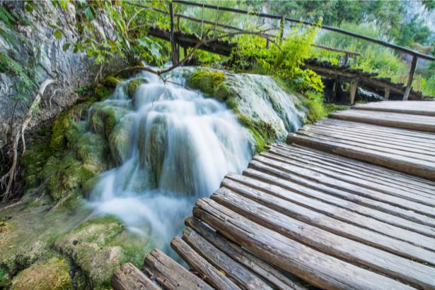 Фотообои мост на реке лес (nature-0000702)