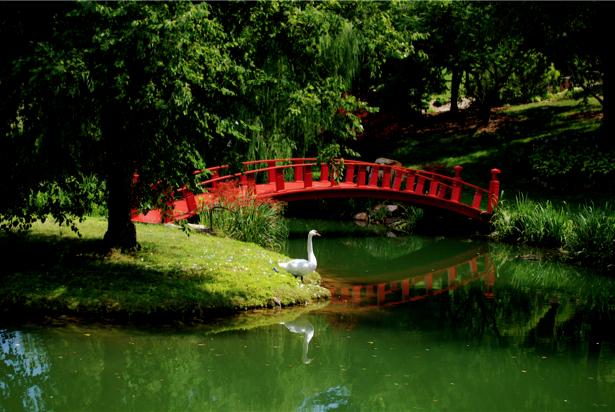 Фотообои красный мост на реке (nature-00282)