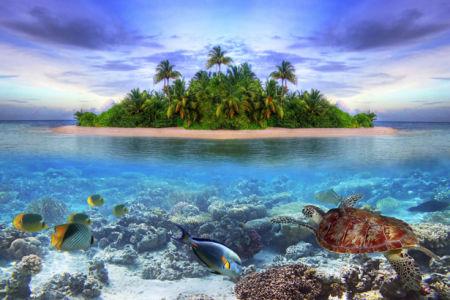 Фотообои море берег остров подводный мир (sea-0000291)