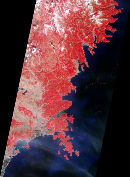 Фотообои 3д красные узоры (terra-00065)