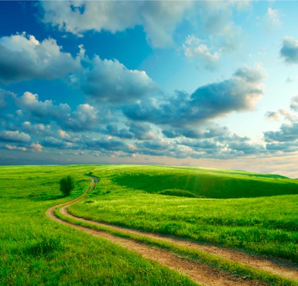 Фотообои поле трава дорога облака на небе (nature-00183)