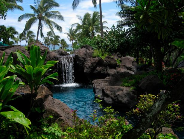 Фотообои с природой водопад пальмы (nature-00187)