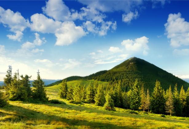 Фотообои горы фото пейзаж лес (nature-00498)