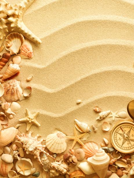Морские ракушки фотообои на песке (underwater-world-00097)