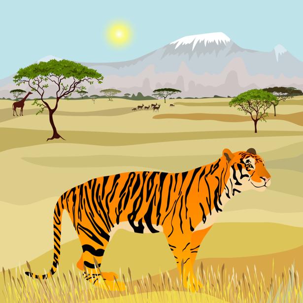 Фотообои тигр рисунок (animals-0000473)