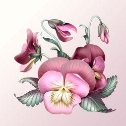 flowers-753