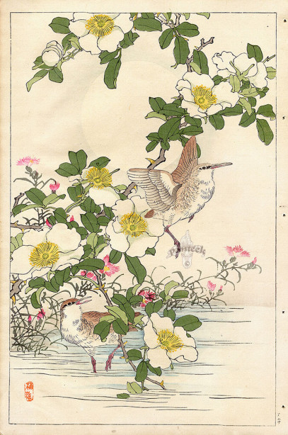 Коно японская графика птицы (japanese-chart-5)
