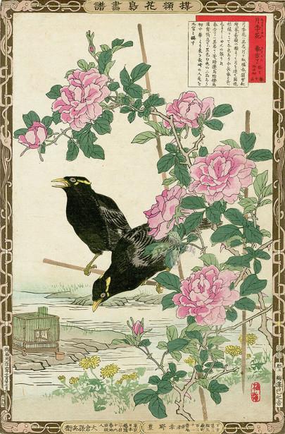 картина птицы и цветы (japanese-chart-8)