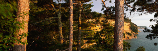 Фотообои речная панорама ель закат (nature-00344)