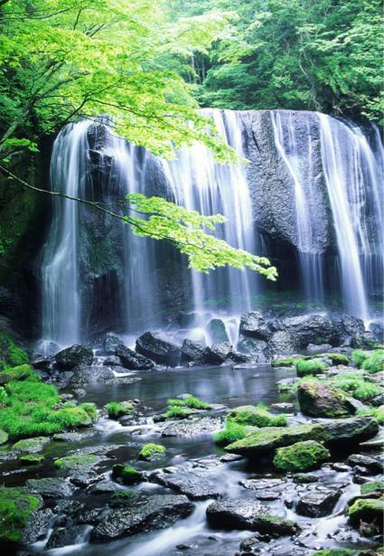 Фотообои природа вертикальные горный водопад (nature-00386)