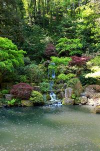 Фотообои Водопад в японском саду (nature-884)