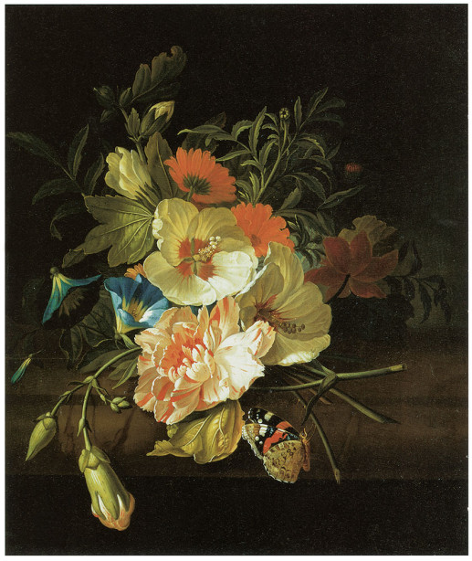 цветы, бабочки Рэйчел Рюйша печать картин на холсте (pf-99)