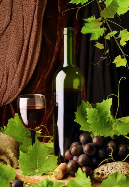 Фотообои фото виноград виная бутылка (still-life-0014)