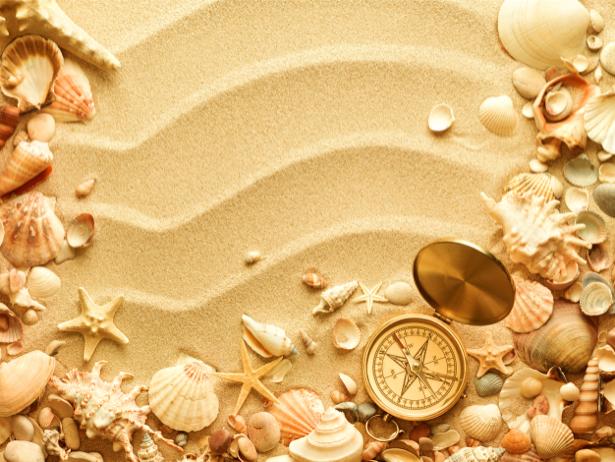 Морские ракушки на песке фотообои (underwater-world-00099)