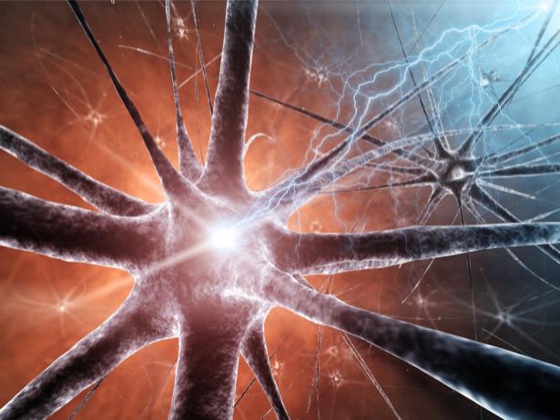 Фотообои нейрон нервные клетки (background-0000266)