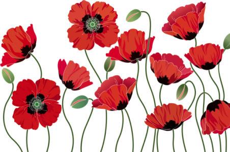 Обои на стену Маки (flowers-0000714)