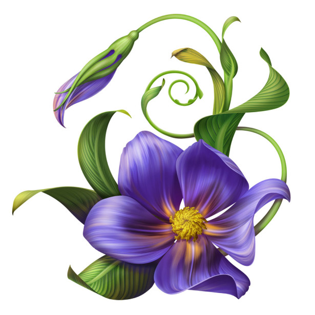 Фотообои Синий цветок (flowers-751)