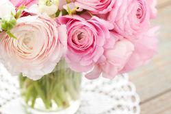 flowers-794