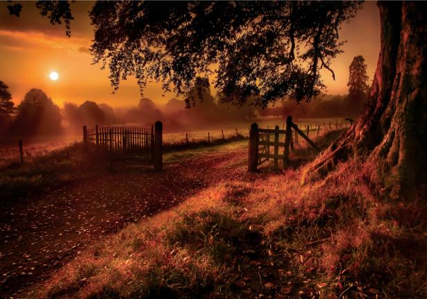 Фотообои виды природы закат солнца пейзаж (nature-00060)