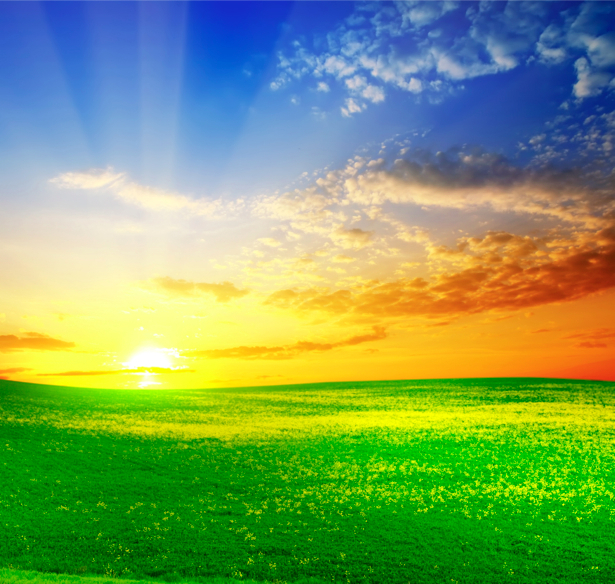 Фотообои поле и закат фото пейзаж (nature-00241)