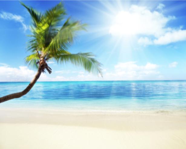 Фотообои пейзажи моря пальмы (sea-0000018)