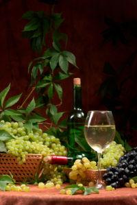 Фотообои вино фото виноград виная бутылка (still-life-0013)