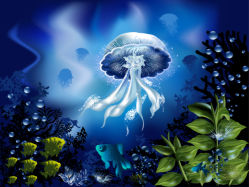 underwater-world-00190