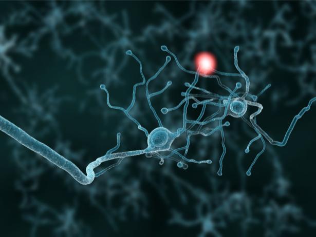 Фотообои нервные клетки медицинский (background-0000268)