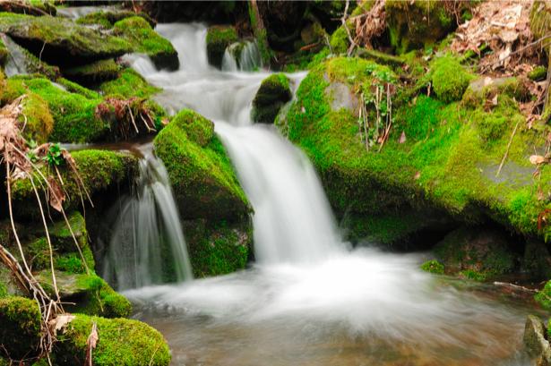 Фотообои с природой водопад натура (nature-00140)