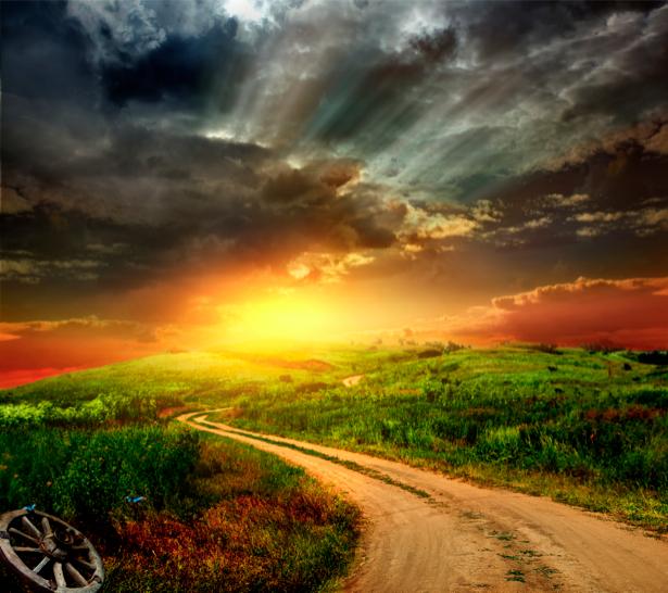 Фотообои дорога поле на закате (nature-00306)