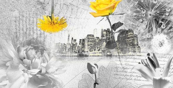 Фотообои коллаж цветочный (prg-155)