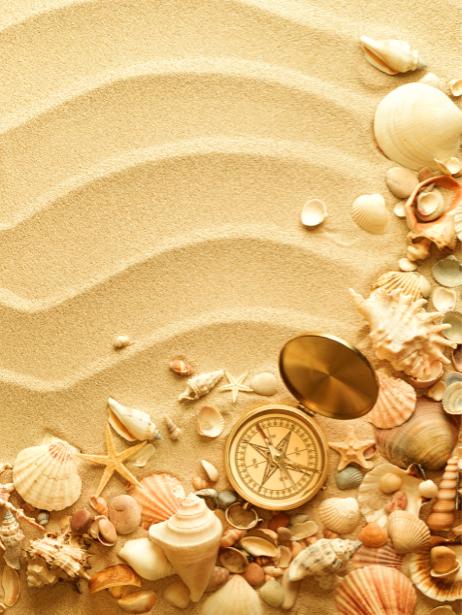 Морские фотообои ракушки на песке (underwater-world-00098)
