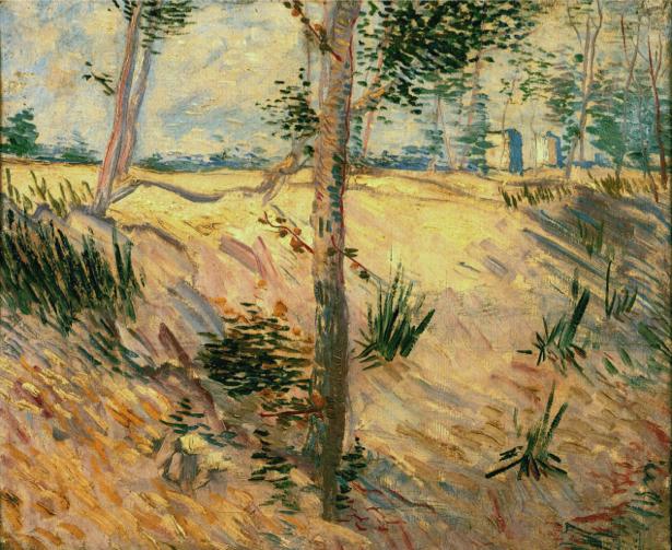 Ван Гог пейзаж (art-0000279)
