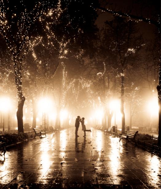Фотообои ночной парк (city-0000308)