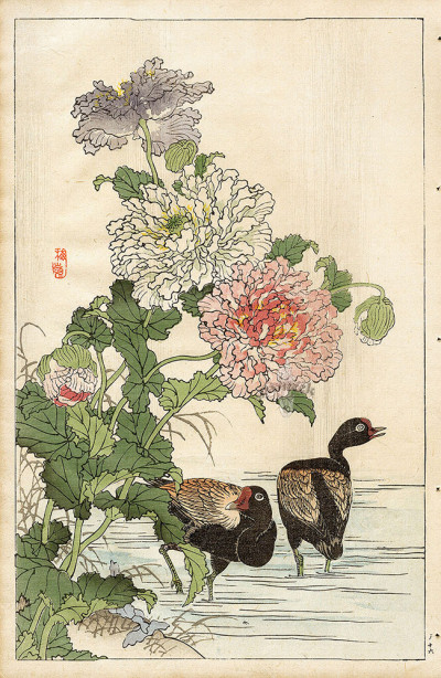 Коно японская графика птицы (japanese-chart-3)