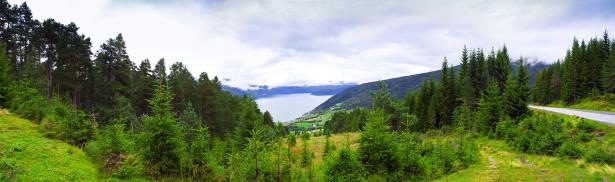 Фотообои панорама природа лес с озером (nature-00503)