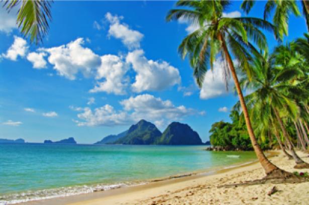 Фотообои берег океан и пальмы (sea-0000129)