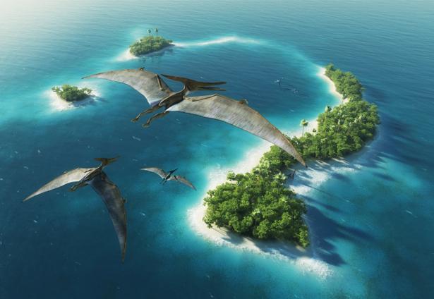 Фотообои вид на океан с высоты полета (sea-0000297)