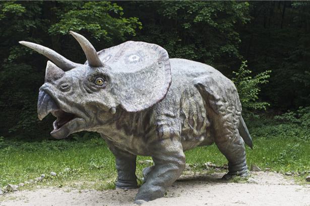 Фотообои динозавр, тираннозавр (animals-0000152)