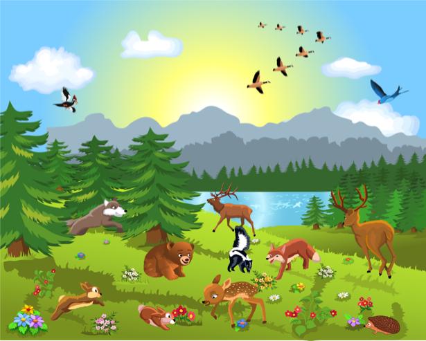 Животные в лесу Детские фотообои (children-0000284)