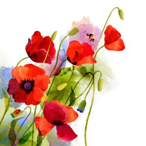 Фото обои для стен Акварельные цветы (flowers-0000707)