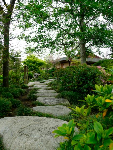 Фотообои с природой дорожка в парке (nature-00104)
