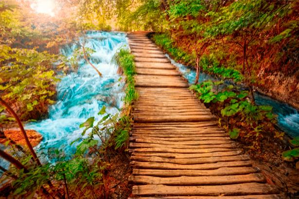 Фотообои природные пейзажи мост через реку (nature-00166)