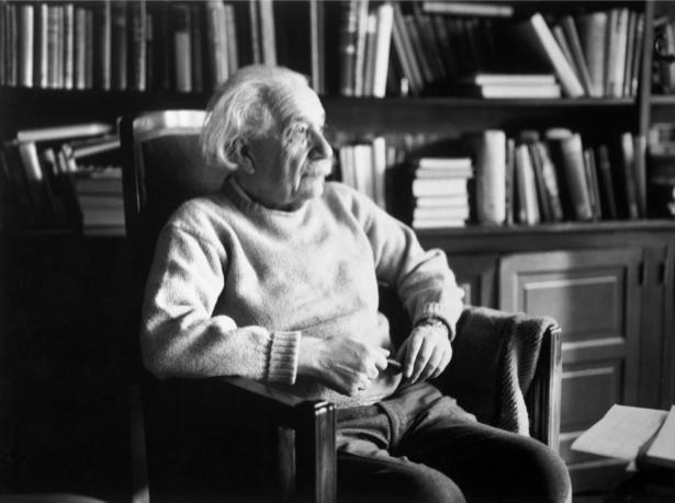 Альберт Энштейн, физик (retro-vintage-0000301)