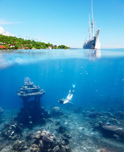 Фотообои море подводный мир (sea-0000289)